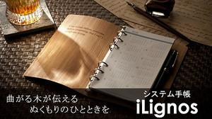 Ilignos_blog